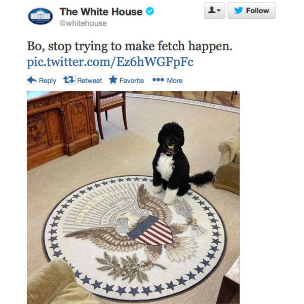 The White House Mean Girls Tweet