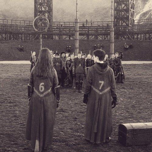 Harry quidditch number 7