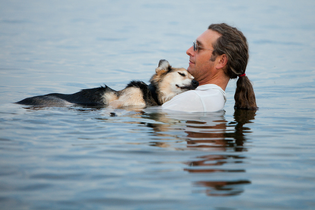 man soaks in water with arthritic dog