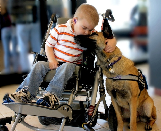 Sick boy with service dog