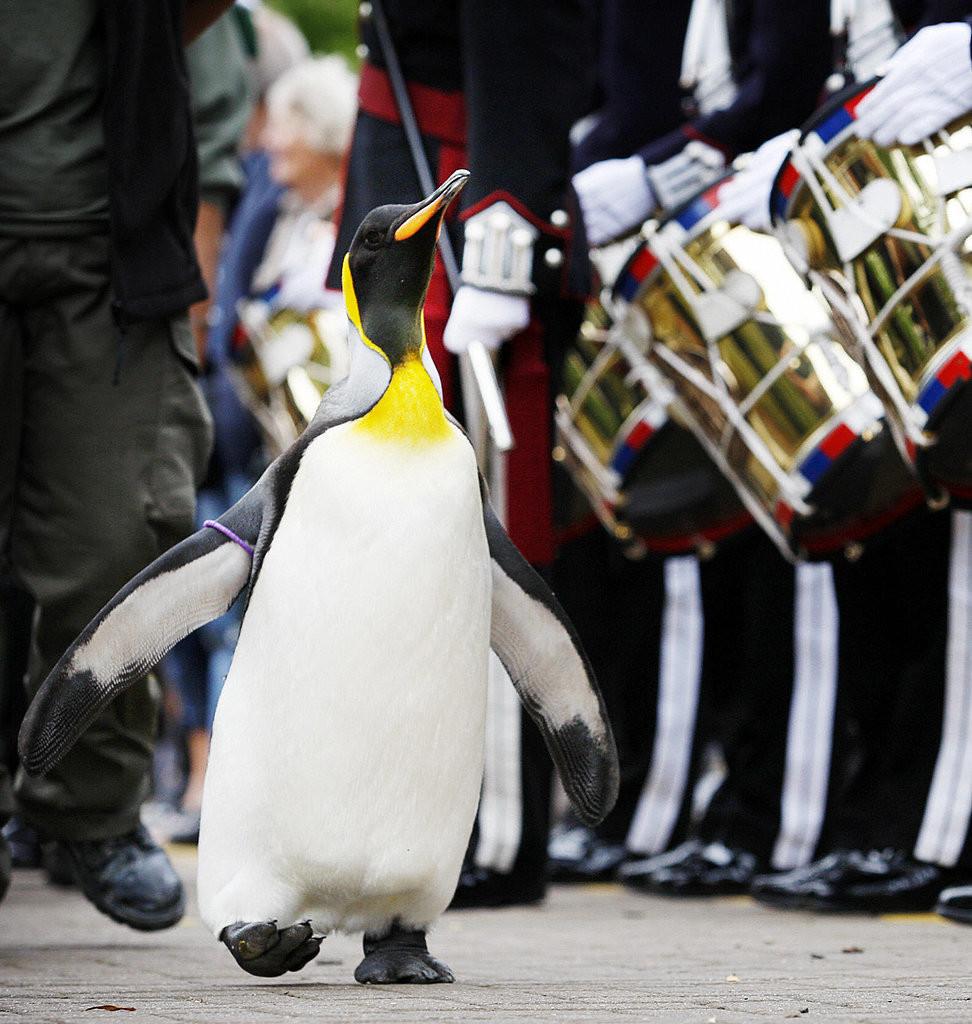 image via www.popsugar.com