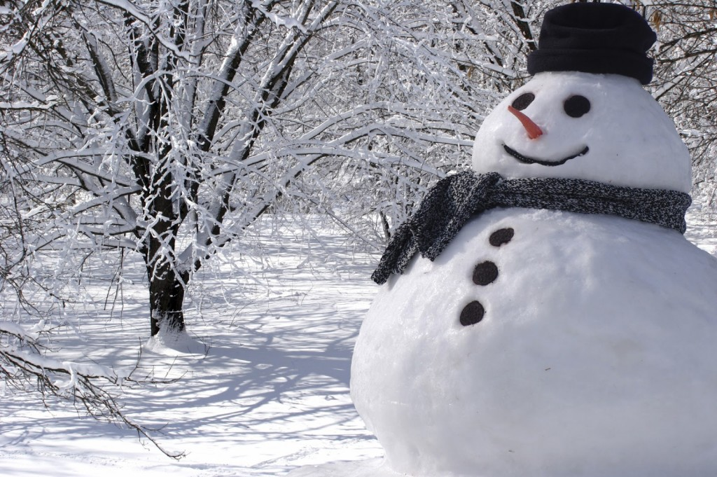 Image result for snowman""